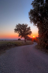 (Dcl'ike) Tags: france nature route arbres provence paysage hdr couchdesoleil sauvage dromeprovenal fleursetvgetation