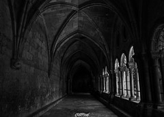 Cathdrale Sainte Thcle (CREE PING) Tags: canon canon7d creeping noir blanc cathdrale espagne 1740mml