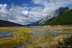 Medicine Lake - Alberta (robertopastor) Tags: amrica canada canadianrockiesmountain canad fuji medicinelake montaasrocosas robertopastor viaje xt2 xf1655mm alberta jasper