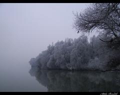 Meditation (djoki80) Tags: river hungary duna danube rd foly