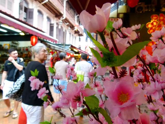 14 Chinatown Cherry Blossom