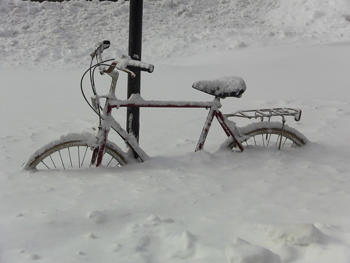 Bike vs Blizzard