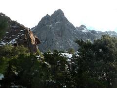 Piste forestière du San Petru : Tafunata di Paliri