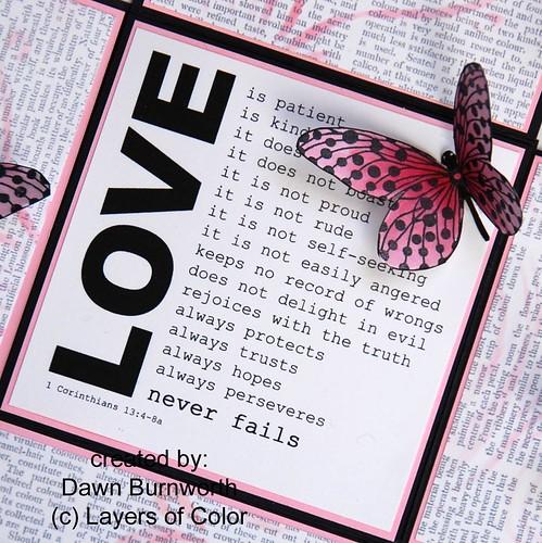 ButterfliesCloseUP verse