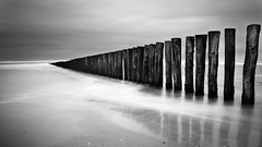 Always lost in the sea (Coco Carrigan) Tags: sea bw white seascape black water canon pose long exposure noir noiretblanc nb minimal minimalism blanc bercksurmer minimalist berck filtre pasdecalais longue minimaliste 400d bw110