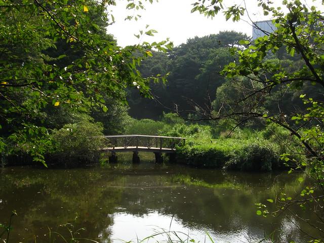 庭園のフリー写真素材