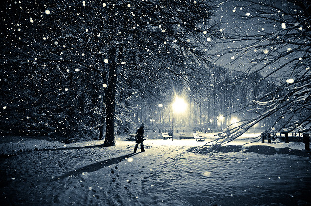 photograph of falling snow