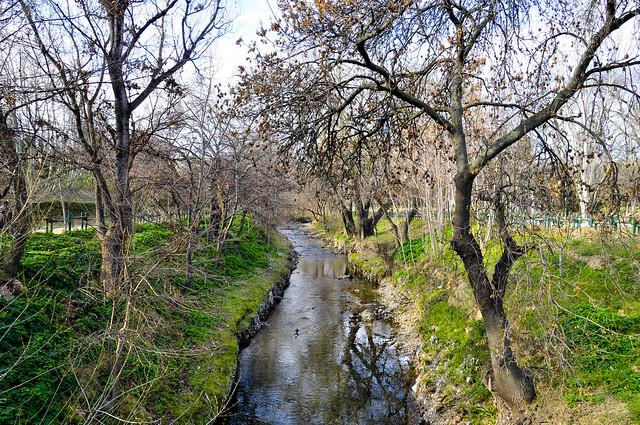 Río Huerva 5