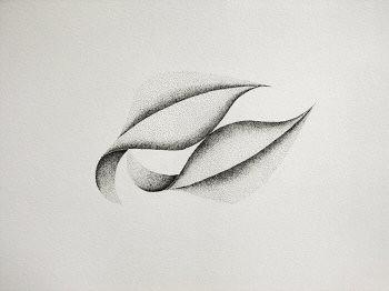Dessin à l'encre, au point, sur papier aquarelle représentant une architecture végétale inspirée d'un pétale de dimension 30x40cm. Dans ce duo, les deux formes sont en contact – Sandrine Vallée