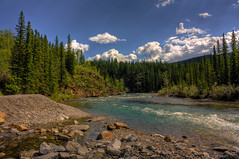 Sweet dreams are made of trees (JoLoLog) Tags: trees canada water river rocks alberta hdr elbowriver lorien kananaskiscountry canadianrockies therockymountains canonxsi bytheelbowriver mygearandme mygearandmepremium mygearandmebronze alonghighway66