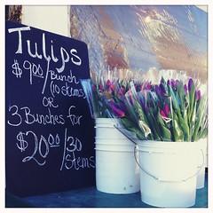 $9.00 tulips (Janine Graf) Tags: cameraphone seattle flowers apple happy bucket tulips market wa pikeplace 900 publicmarket iphone4 iphonephotography hipstamatic janine1968