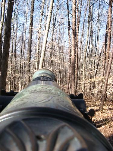 Cannneer's view