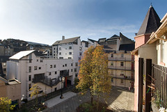 Cowgate Housing, Edinburgh