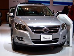 2011 VW Tiguan *punch*
