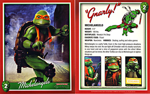 TEENAGE MUTANT NINJA TURTLES :: 25th Anniversary Collector's Edition { 4 Blu-ray Movie Disc set } .. // Character Card #2; Michelangelo  (( 2009 ))