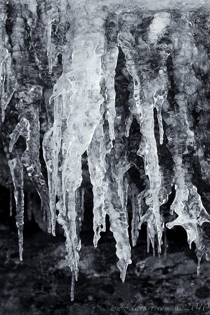 Icicles, Yosemite National Park, California, 2010