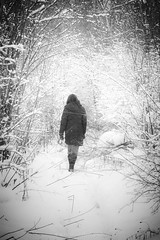 A snowy Walk, December 2010 (Mike Wood Photography) Tags: trees winter blackandwhite bw woman snow cold girl walking outdoors eos coat arr snowing walkingaway allrightsreserved ryn mikewood 450d mikewoodphotographycom mikewoodphotography