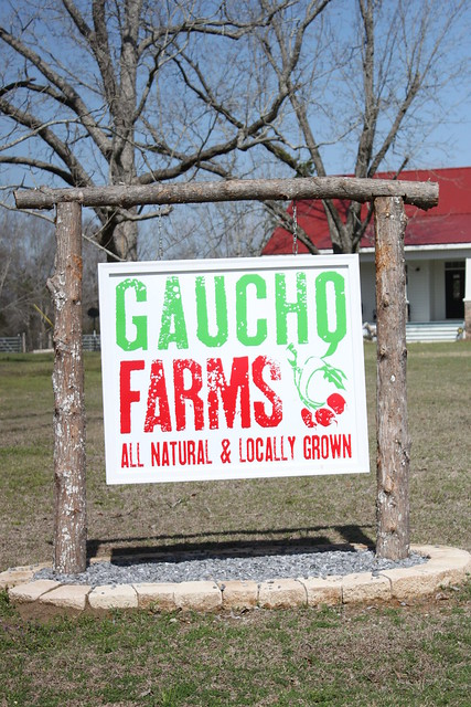 Gaucho Farms 068