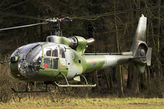 AAC WESTLAND GAZELLE ZB691 AH1 (John Ambler) Tags: training army air corps area salisbury gazelle plain westland aac ah1 salisburyplaintrainingarea zb691 240211