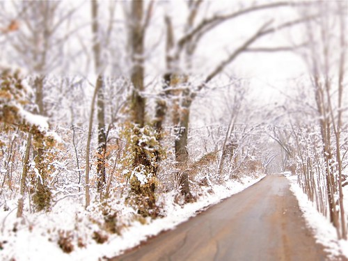Dreamy Lane by NCM3, on Flickr