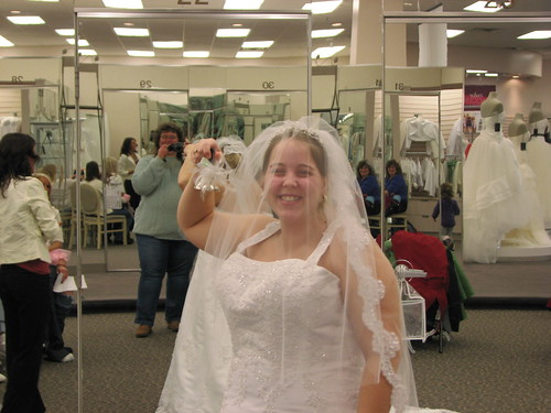 Ambers Wedding Dress - 2-13-11 065