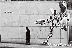 Followed (Eliseo Oliveras) Tags: life street city brussels people urban blackandwhite bw white streetart black art blanco museum mural europa europe arte dinosaur belgium belgique belgie painted negro bruxelles bn bruselas brussel belgica blanc fresco cultura negre trompeloeil blackdiamond dinosaurio pintado bonom eliseooliveras eliseooliveras