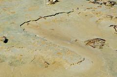 Odd sand/? layers