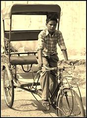 Laboring Child (Viswas Nair TK) Tags: people india 50mm nikon indian human d90 nikond90