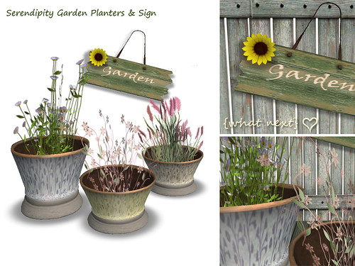 {what next} Serendipity Garden Planters & Sign