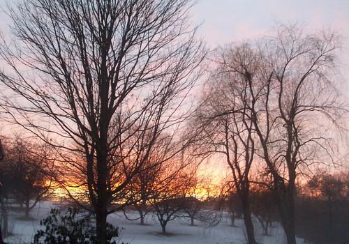 Sunset_31111