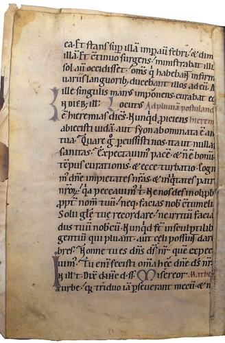 Manuscript fragment from Bartholomaeus Anglicus: De proprietatibus rerum