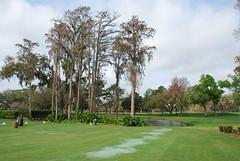 080222-003 Country Club of Orlando (WashuOtaku) Tags: golf orlando florida nikond80 countrycluboforlando