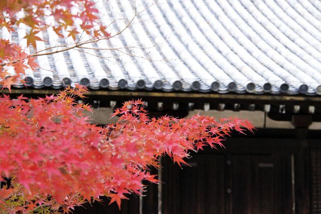 20101118_100610_法隆寺_西室、三経院(国宝)
