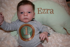 Ezra, one month old