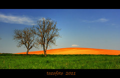 (tozofoto) Tags: trees light sky colors clouds canon landscape bravo hungary zala tozofoto