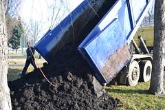L'arrivo del compost 17