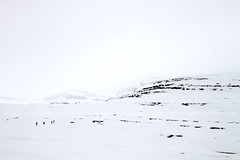 Cap als murs (Puckyireth) Tags: mountain snow sergio montagne huesca sandra nieve owen montaa niebla muntanya neu osca ordesa nria boira monteperdido puckyireth montperdut mnicautjs