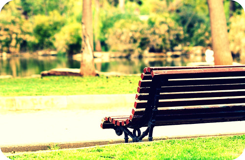 Banco solitario // Lonely bench