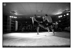 20110326_FREE-FIGHT_0278 (Dresseur d'images) Tags: freefight sportloisirs