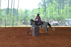 Clinton Arena Horse Show 25/30 (Marsh, D.) Tags: show horse woman phoenix lady nikon louisiana barrels clinton gray arena trail riding western poles rider equine equus quarterhorse placed participating greymare d3000 deesnke marshd