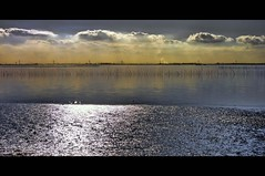 afternoon reflections (Wim Koopman) Tags: light sea holland water netherlands dutch clouds canon reflections river photography photo bright stock delta powershot wetlands stockphoto s90 stockphotography s100 oosterschelde tholen estuarium oesterdam wpk s95