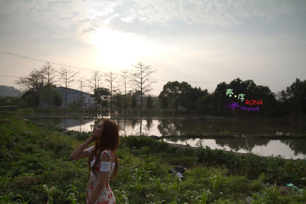 春序-RONA