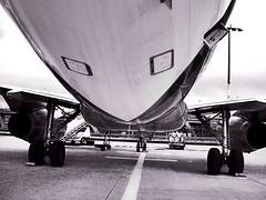 A 319 (*carsteanca*) Tags: airplane airport aircraft airbus a319 319 aircraftspotting kölnbonnflughafen
