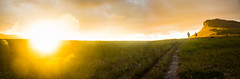 DSC_5847_PAN (sergeysemendyaev) Tags: 2016 brazil bahia lenis chapadadiamantina nationalpark      adventure   hiking     hills rocks mountain mountains valley  valedocapao  palmeiras  nature natural    panorama panoramicview  landscape scenery  yellow gold    sunset dusk sun       amazing beautiful beauty marvelous miracle miraculous unforgettable
