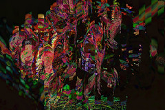 Hortensia desfragmentada (seguicollar) Tags: flower flor plantas vegetal vegetacin virginiasegu imagencreativa photomanipulacin artedigital arte artecreativo art