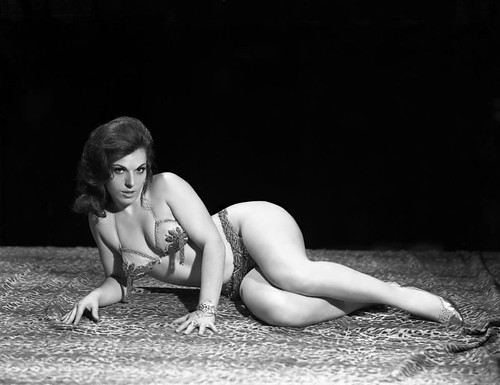 Question Vintage sexy pictures me?