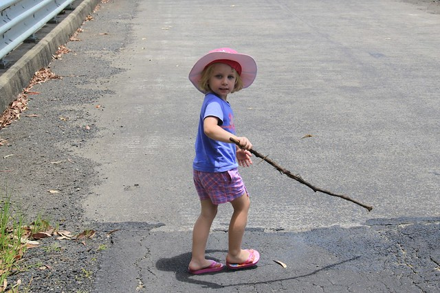 Hayley and the stick