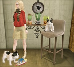 ...Garvagh stool .... (lindini2) Tags: plants socks scarf shoes graph skirt shelf sl secondlife miel shorts doggies kosh littleboat theosophy concreteflowers vooner milkmotion oyakin montissu winterseasonshunt garvaghstool thereisnoplacelikehomehunt ravenpictures pomponsteamship