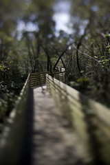 Boardwalk (ethics_gradient) Tags: tampa diy florida bokeh sony nikkor f28 ts tiltshift nex3