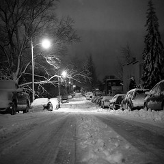 5:30 AM (patrickjoust) Tags: park city morning bw usa white snow black 120 6x6 tlr blancoynegro film home night analog america dark square lens early us reflex am md focus mechanical streetlights snowy united release tripod north patrick twin maryland cable super baltimore east v german diafine ddr epson after medium format 100 states manual 500 expired 80 joust developed ricoh hampden 1990 wyman develop 125 estados 530 80mm f35 blancetnoir orwo unidos ricohflex v500 schwarzundweiss np22 autaut patrickjoust